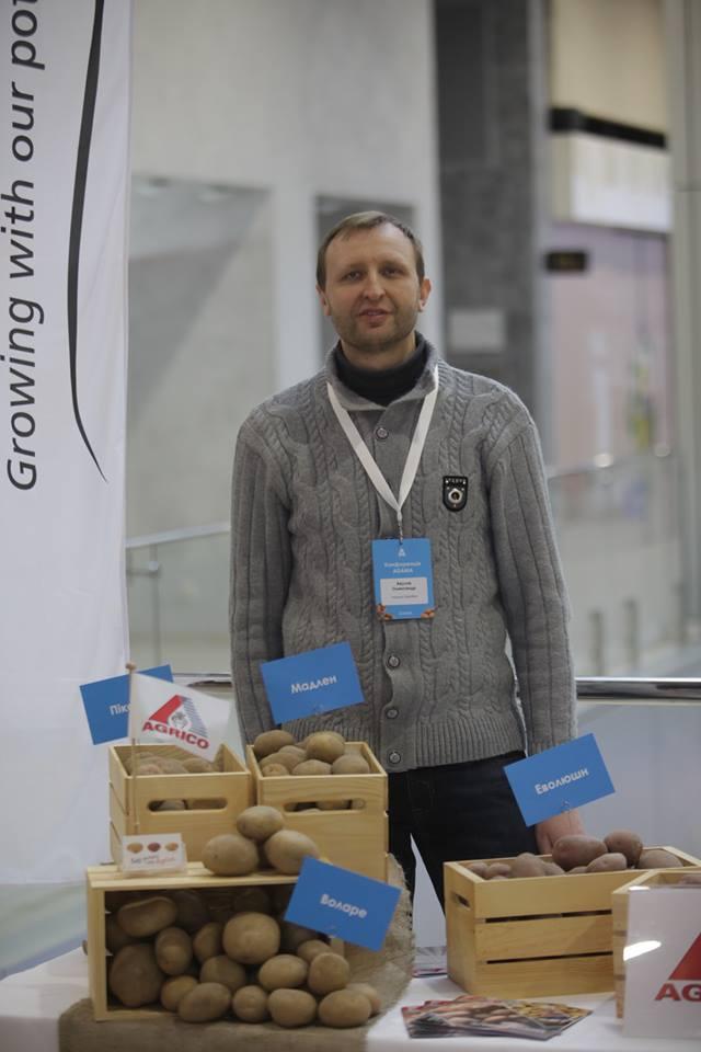 Akulov_potato3